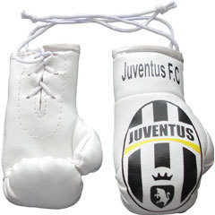 JUVENTUS BOXING GLOVES