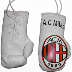 AC MILAN BOXING GLOVES
