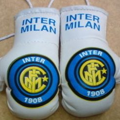 INTER MILAN BOXING GLOVES