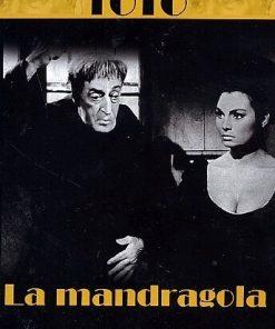 TOTO 'LA MANDRAGOLA
