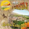 I GIRASOLI - ARIA DI CASA MIA VOLUME 23