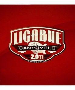 LIGABUE - CAMPOVOLO 2.011 - 3CD
